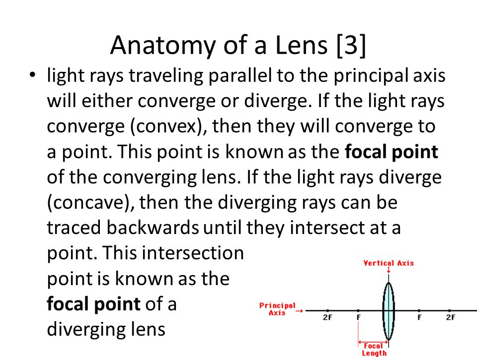 Anatomy of a Lens [3]
